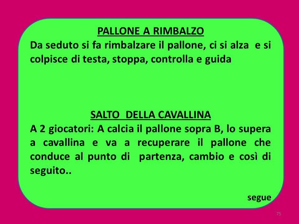 PALLONE A RIMBALZO SALTO DELLA CAVALLINA