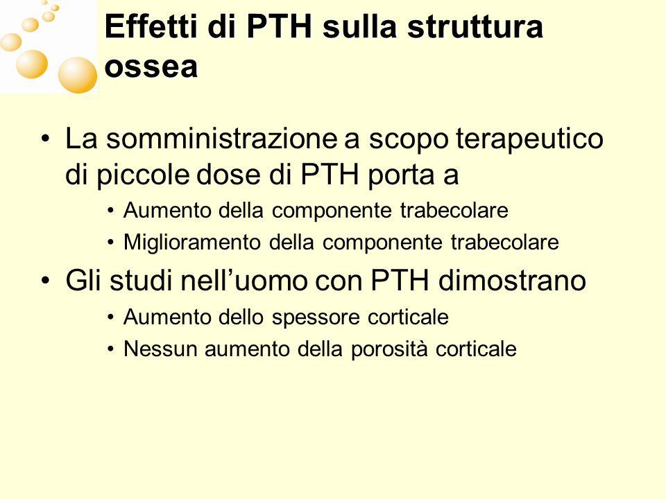 Effetti di PTH sulla struttura ossea