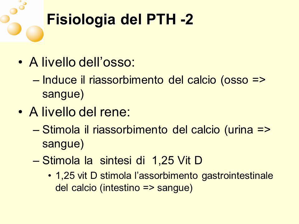 Fisiologia del PTH -2 A livello dell'osso: A livello del rene: