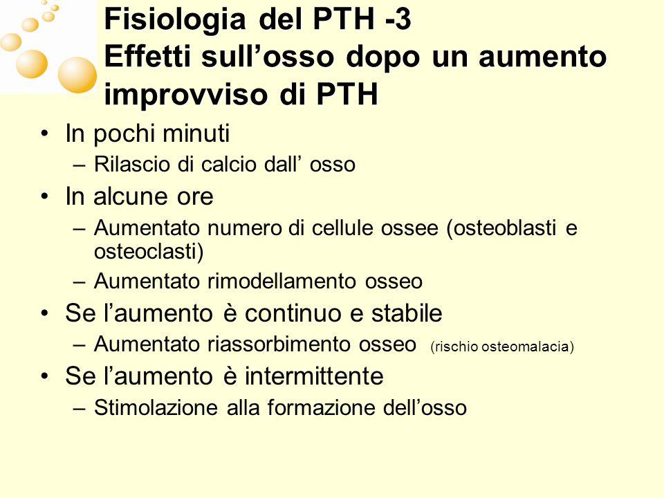 Fisiologia del PTH -3 Effetti sull'osso dopo un aumento improvviso di PTH