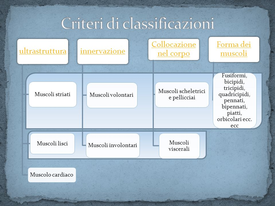 Criteri di classificazioni