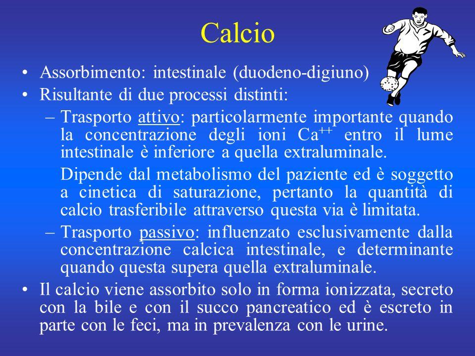 Calcio Assorbimento: intestinale (duodeno-digiuno)