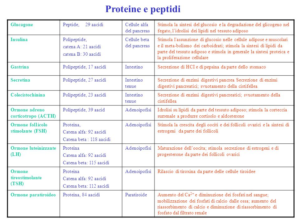 Proteine e peptidi Glucagone Peptide, 29 aacidi