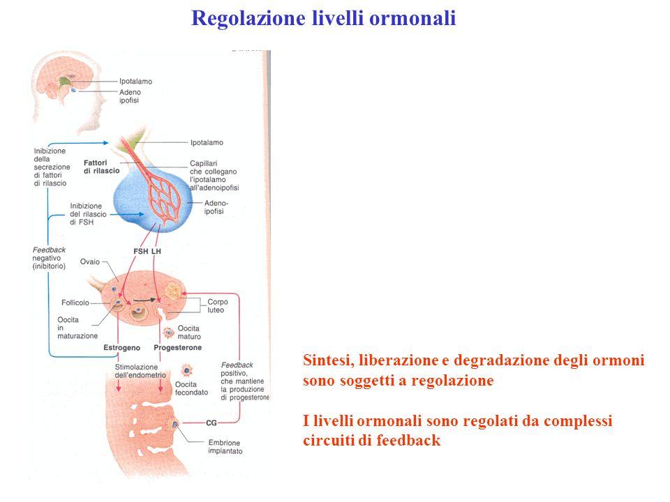 Regolazione livelli ormonali