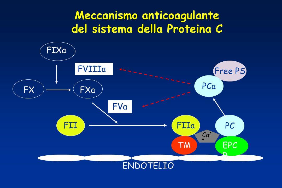 Meccanismo anticoagulante del sistema della Proteina C