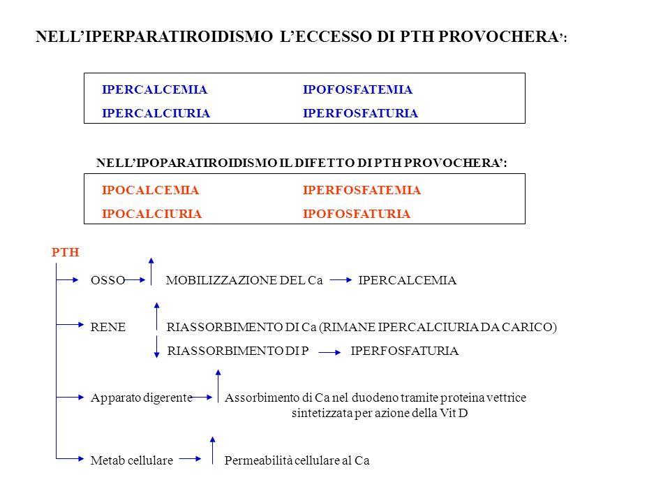 NELL'IPERPARATIROIDISMO L'ECCESSO DI PTH PROVOCHERA':