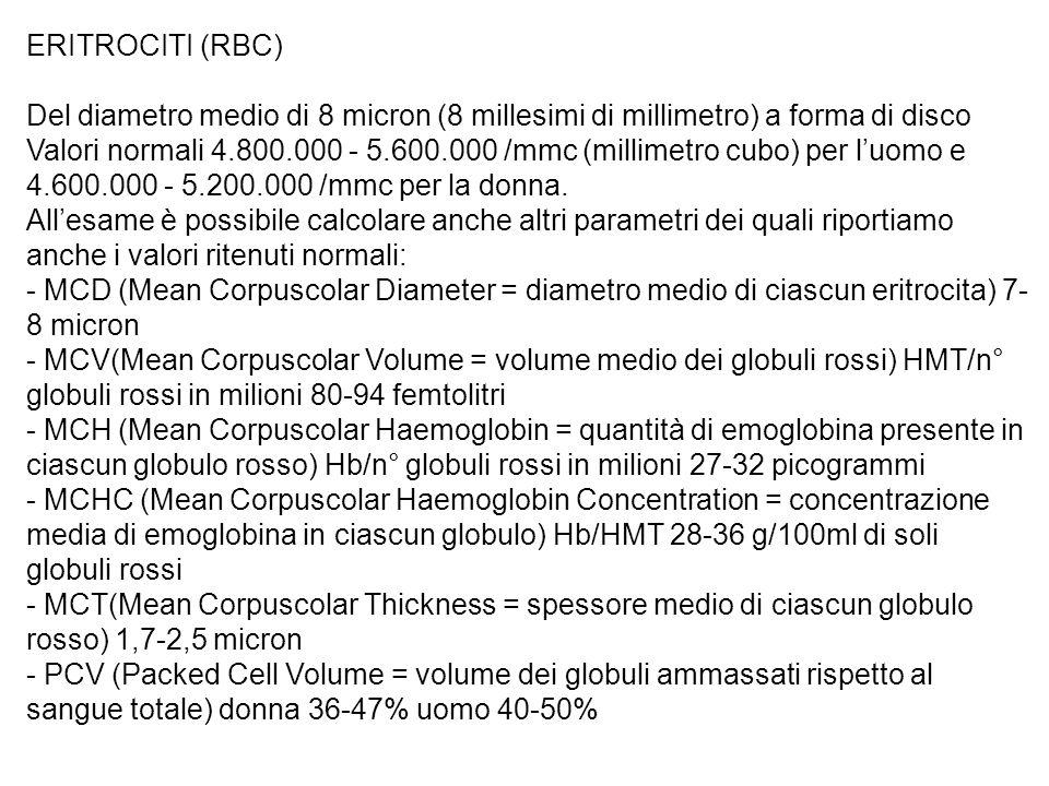 ERITROCITI (RBC) Del diametro medio di 8 micron (8 millesimi di millimetro) a forma di disco.