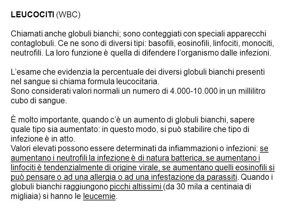 LEUCOCITI (WBC)