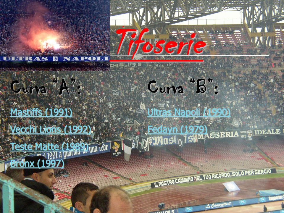Tifoserie Curva A : Curva B : Mastiffs (1991) Vecchi Lions (1992)