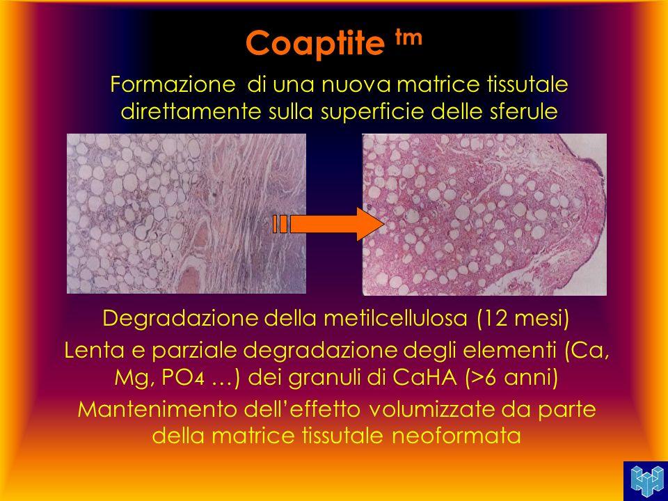 Degradazione della metilcellulosa (12 mesi)