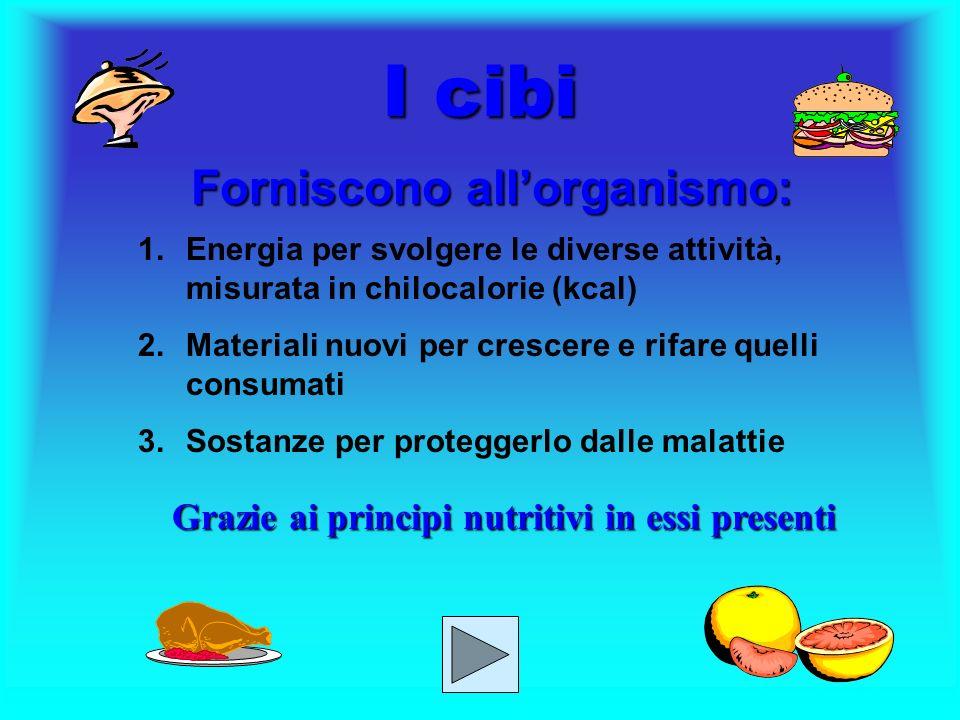 I cibi Forniscono all'organismo: