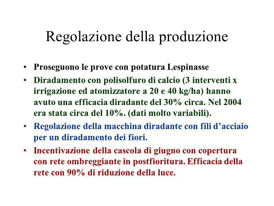 Regolazione della produzione