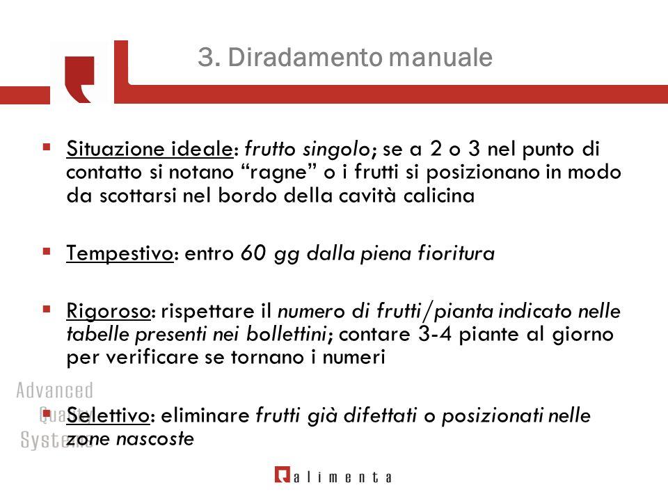 3. Diradamento manuale