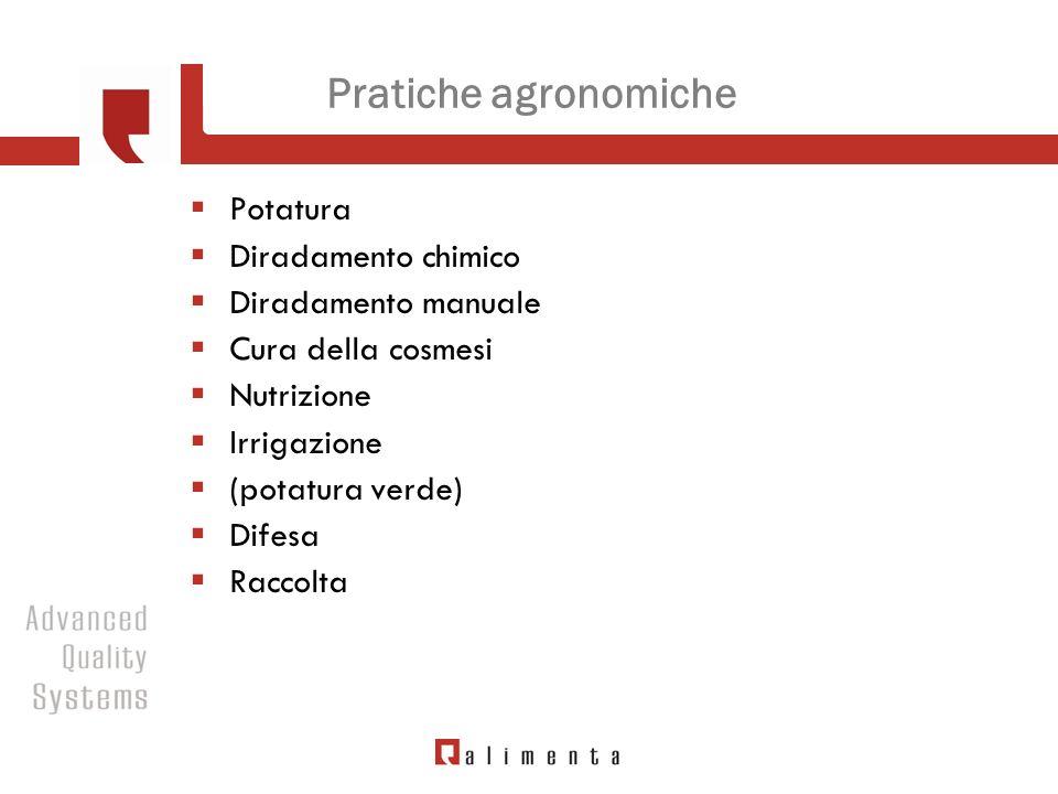 Pratiche agronomiche Potatura Diradamento chimico Diradamento manuale