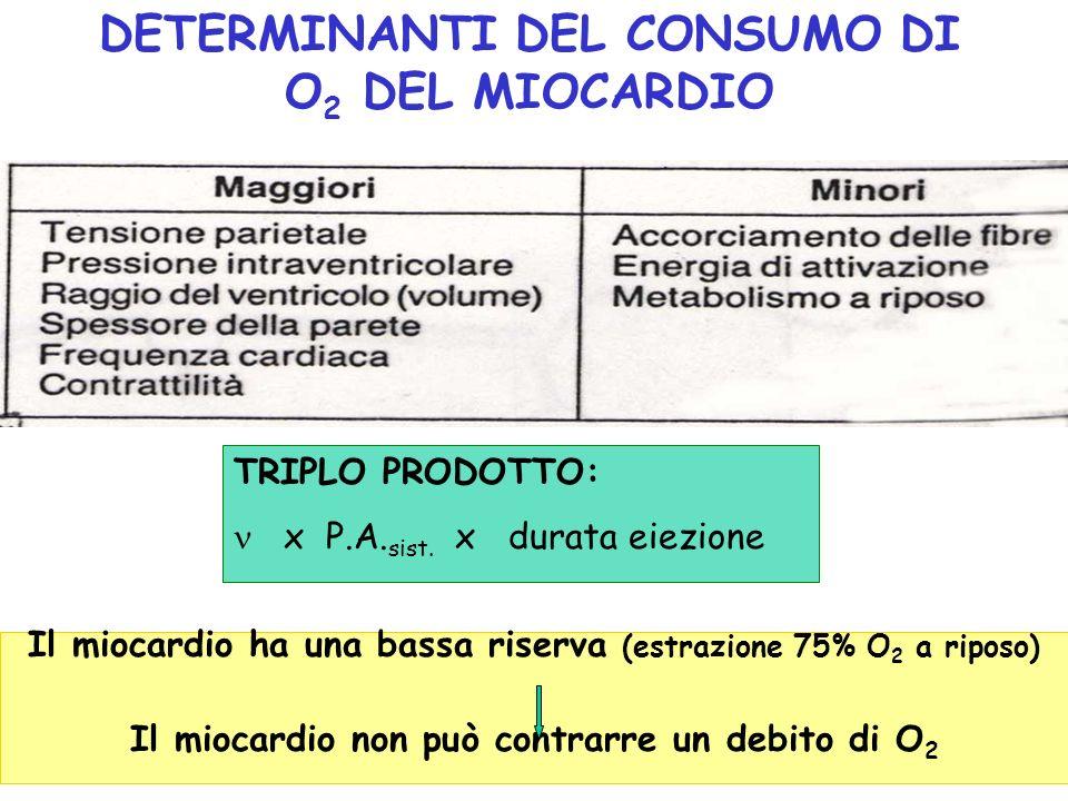 DETERMINANTI DEL CONSUMO DI O2 DEL MIOCARDIO