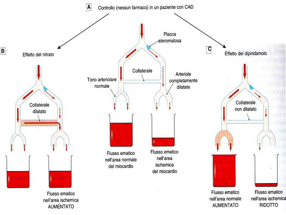 In pz normale, I nitrati aumentano il flusso coronarico