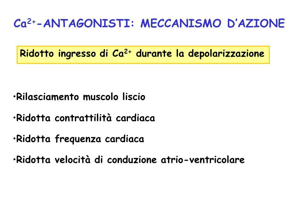 Ca2+-ANTAGONISTI: MECCANISMO D'AZIONE
