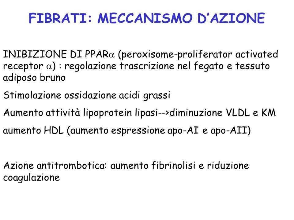 FIBRATI: MECCANISMO D'AZIONE