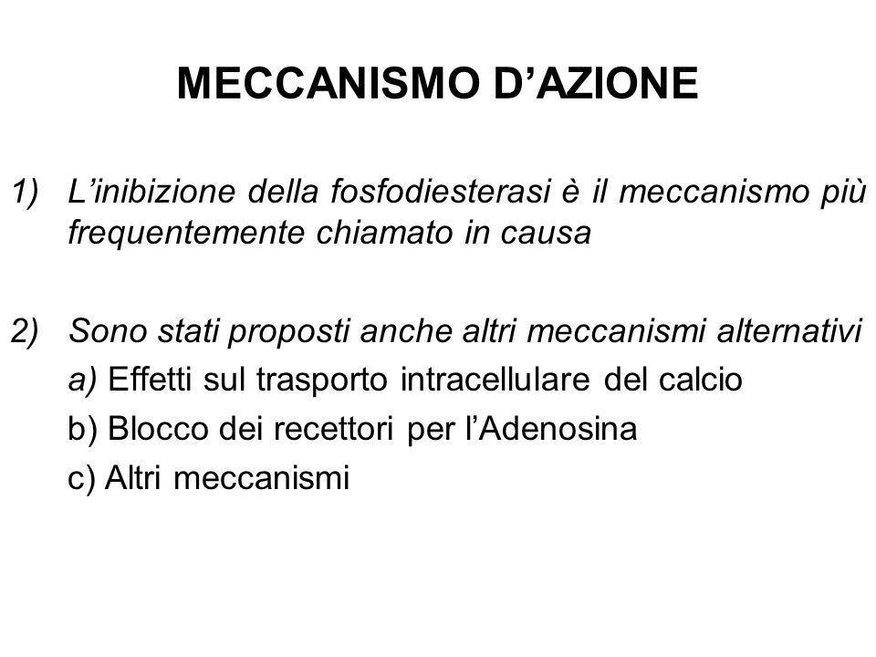 MECCANISMO D'AZIONE L'inibizione della fosfodiesterasi è il meccanismo più frequentemente chiamato in causa.