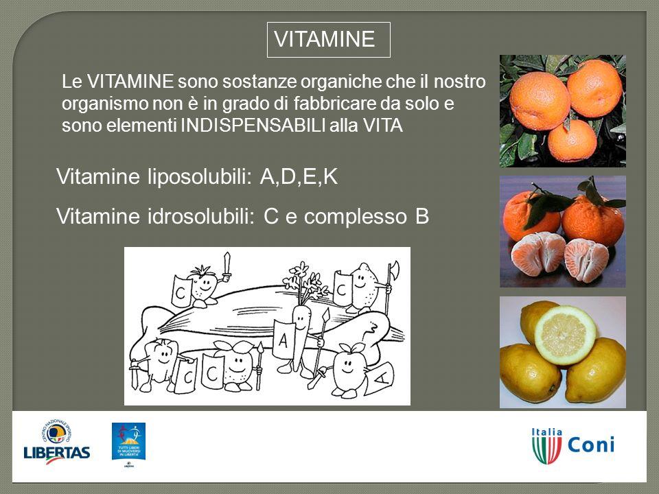 Vitamine liposolubili: A,D,E,K Vitamine idrosolubili: C e complesso B