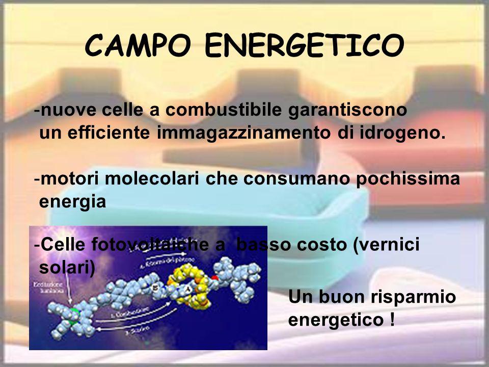 CAMPO ENERGETICO nuove celle a combustibile garantiscono