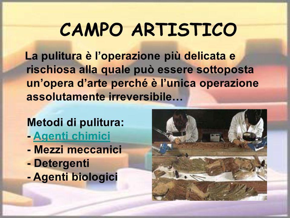 CAMPO ARTISTICO