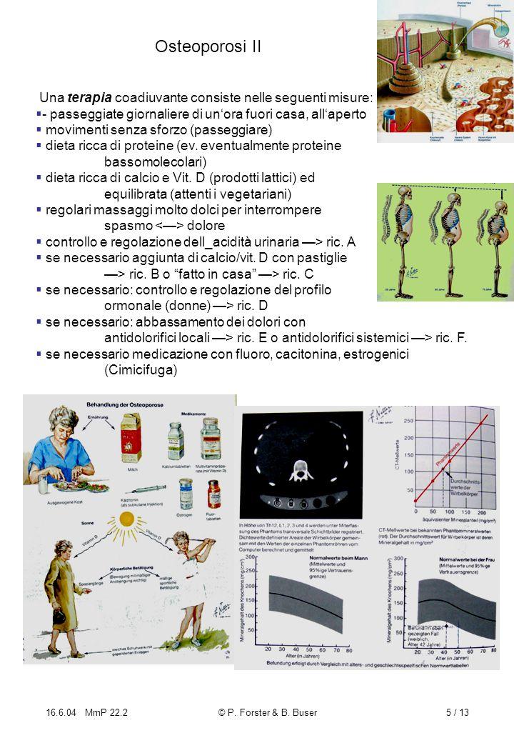 Osteoporosi II Una terapia coadiuvante consiste nelle seguenti misure: