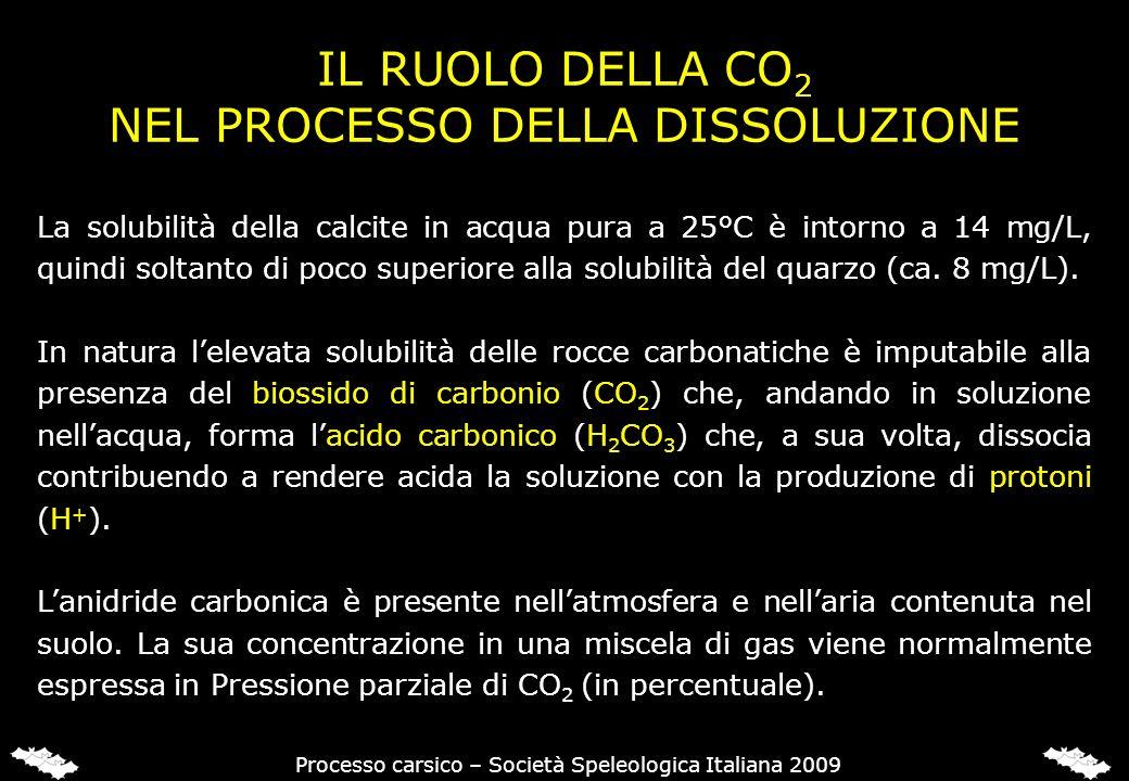 IL BIOSSIDO DI CARBONIO (CO2) NEI SUOLI