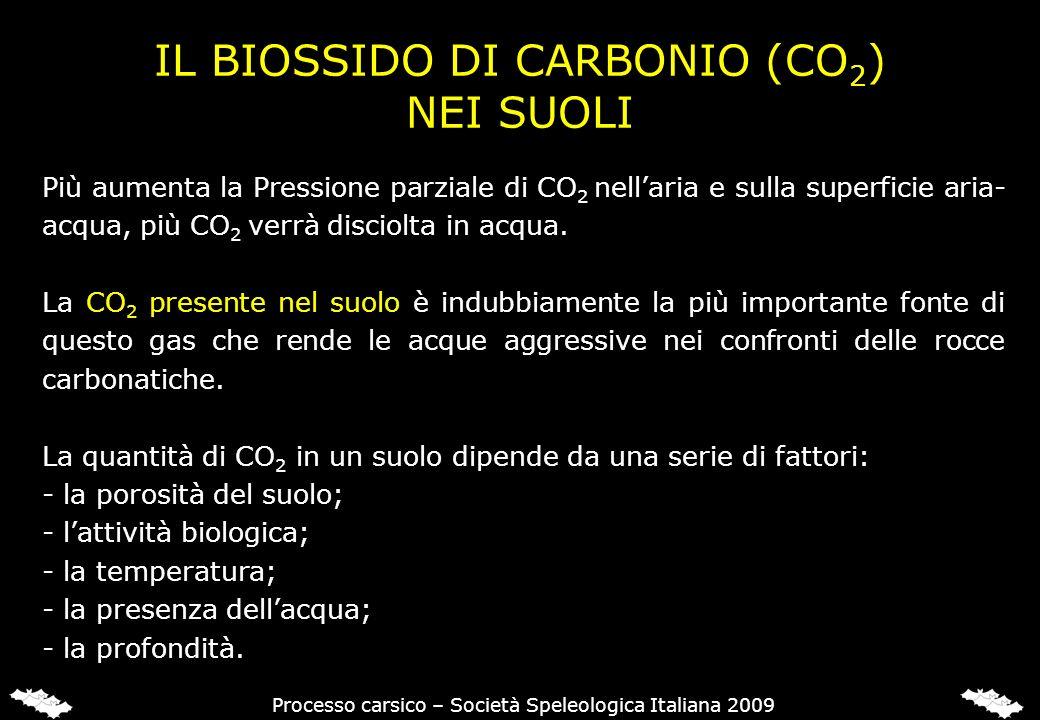L'ANIDRIDE CARBONICA (CO2) NEI SUOLI