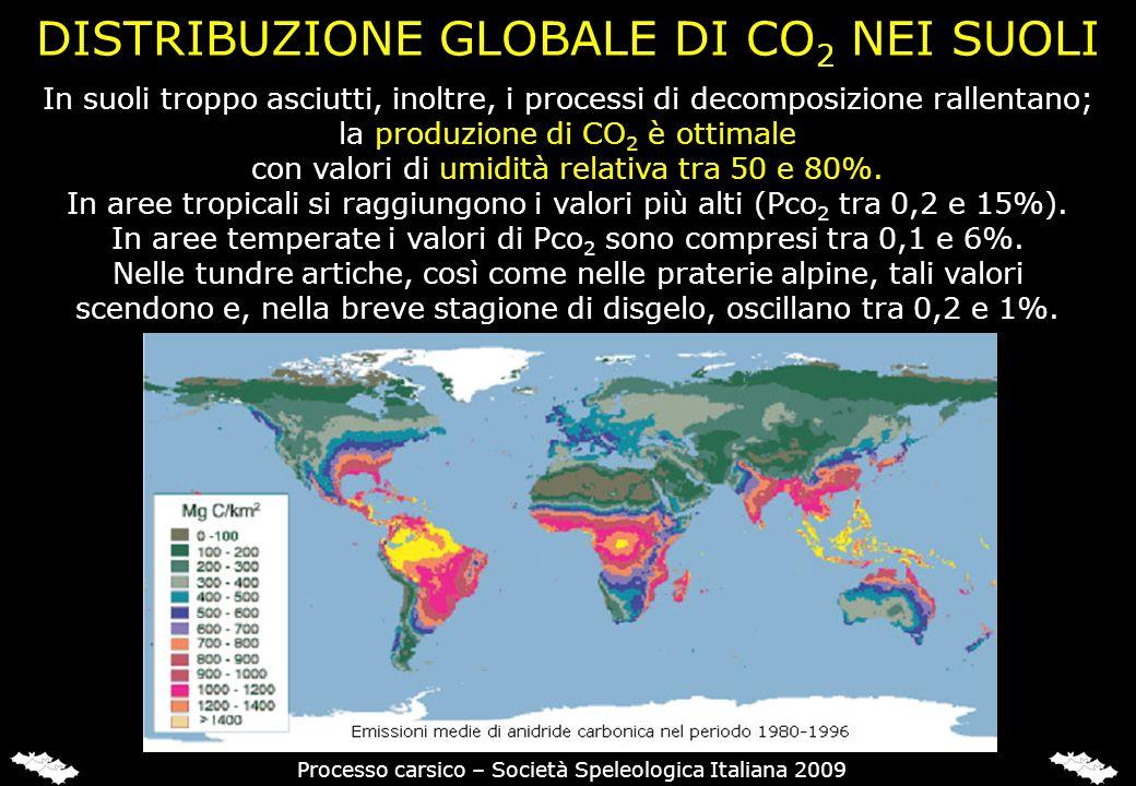 CO2 NELL'ARIA, NEL SUOLO E NELLE GROTTE