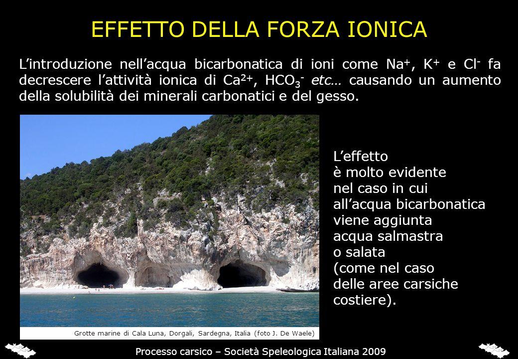 EFFETTO DELL'ACCOPPIAMENTO IONICO