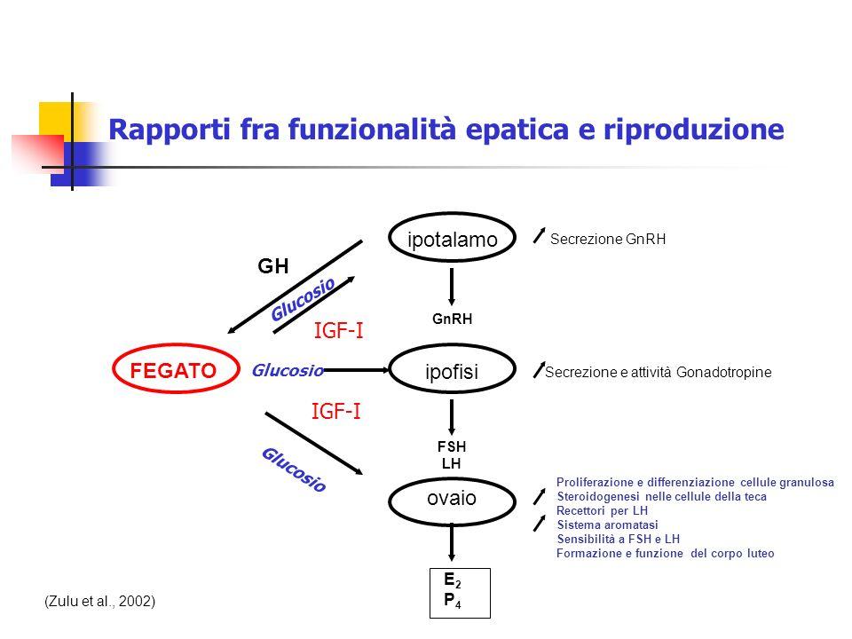 Secrezione e attività Gonadotropine