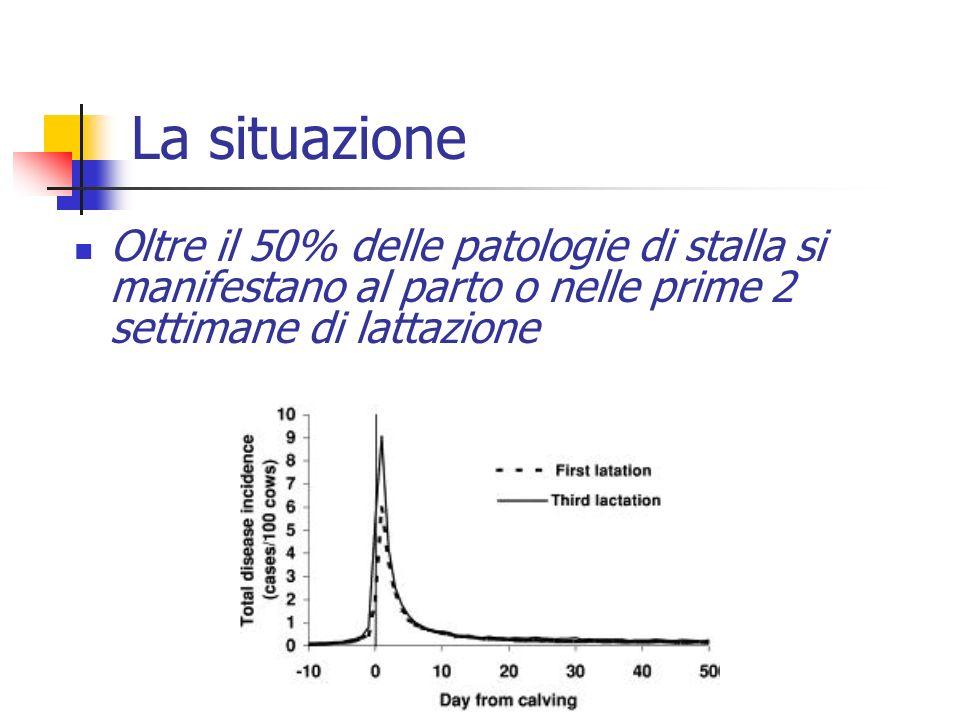 La situazione Oltre il 50% delle patologie di stalla si manifestano al parto o nelle prime 2 settimane di lattazione.