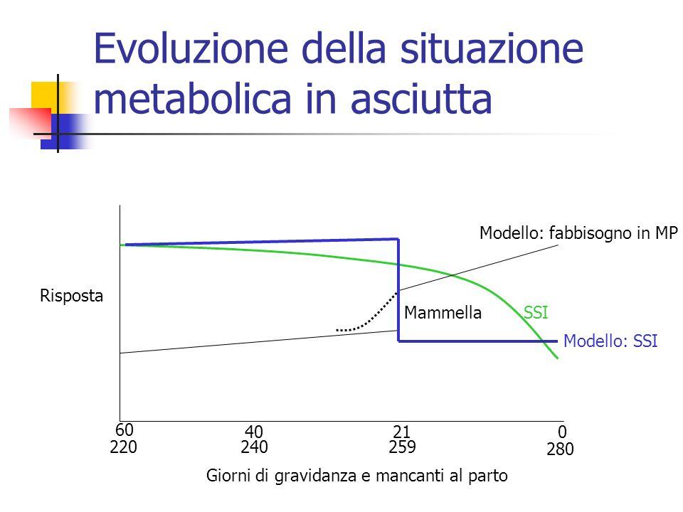 Evoluzione della situazione metabolica in asciutta
