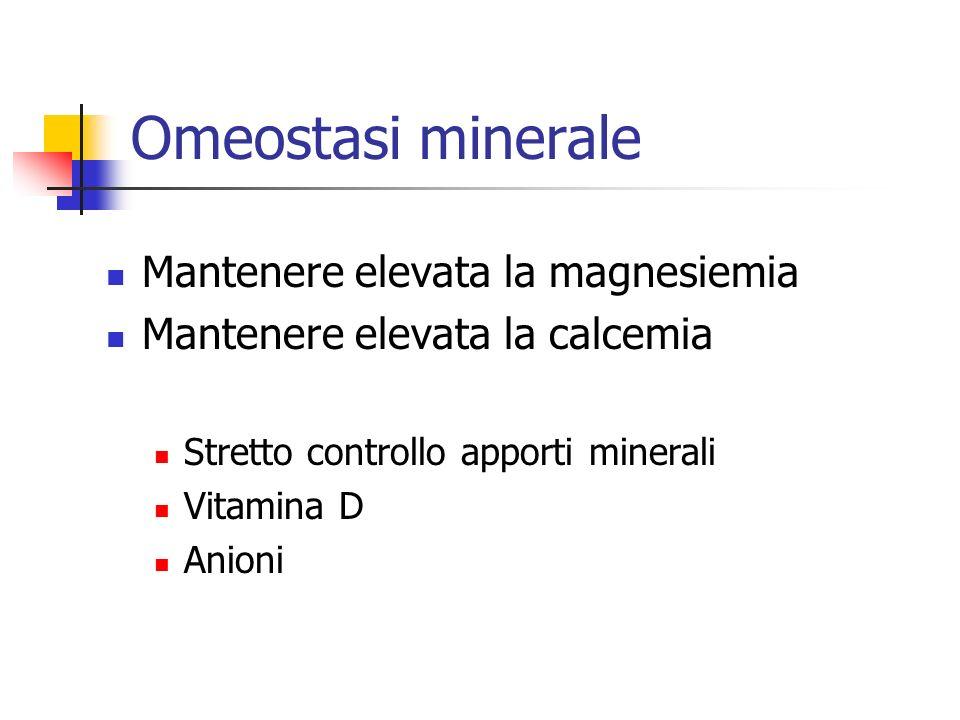 Omeostasi minerale Mantenere elevata la magnesiemia
