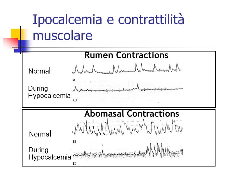 Ipocalcemia e contrattilità muscolare