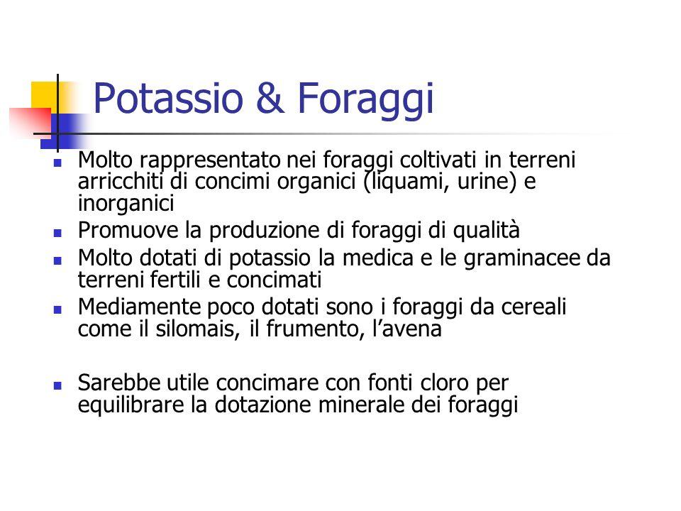 Potassio & Foraggi Molto rappresentato nei foraggi coltivati in terreni arricchiti di concimi organici (liquami, urine) e inorganici.