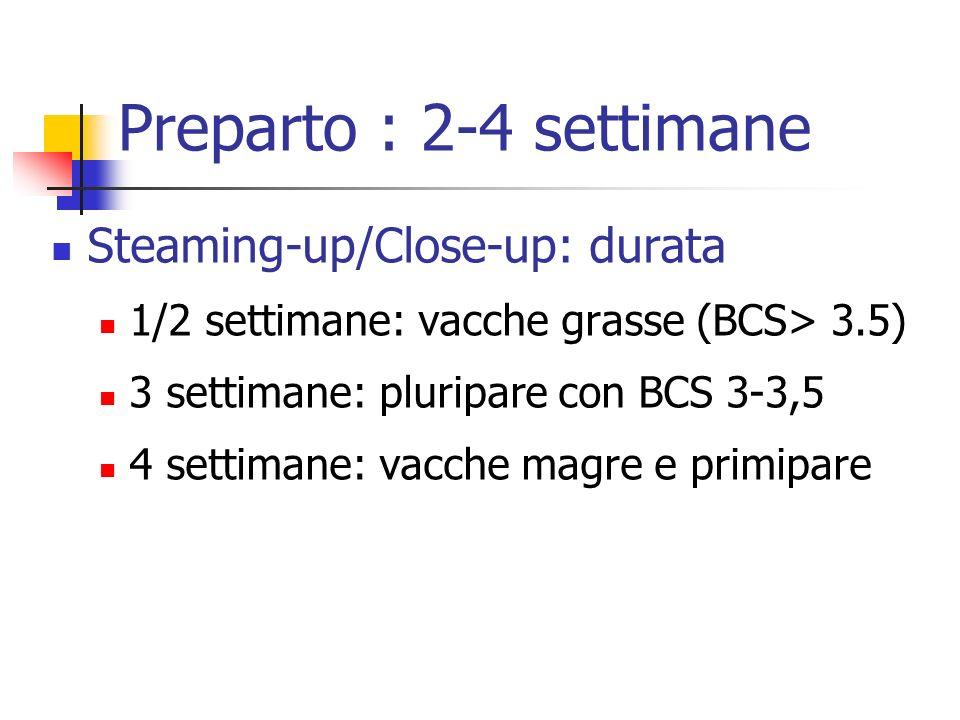 Preparto : 2-4 settimane Steaming-up/Close-up: durata