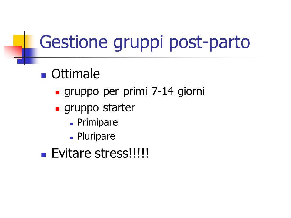Gestione gruppi post-parto