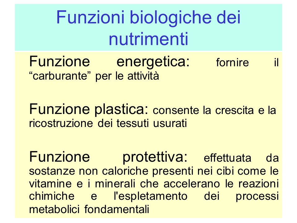 Funzioni biologiche dei nutrimenti