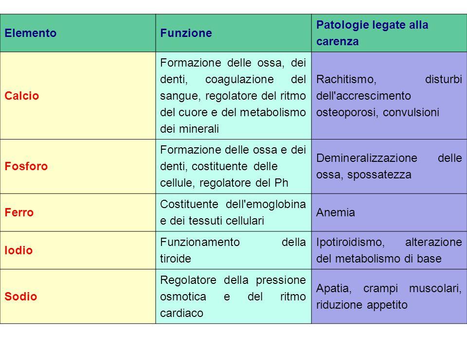 Patologie legate alla carenza