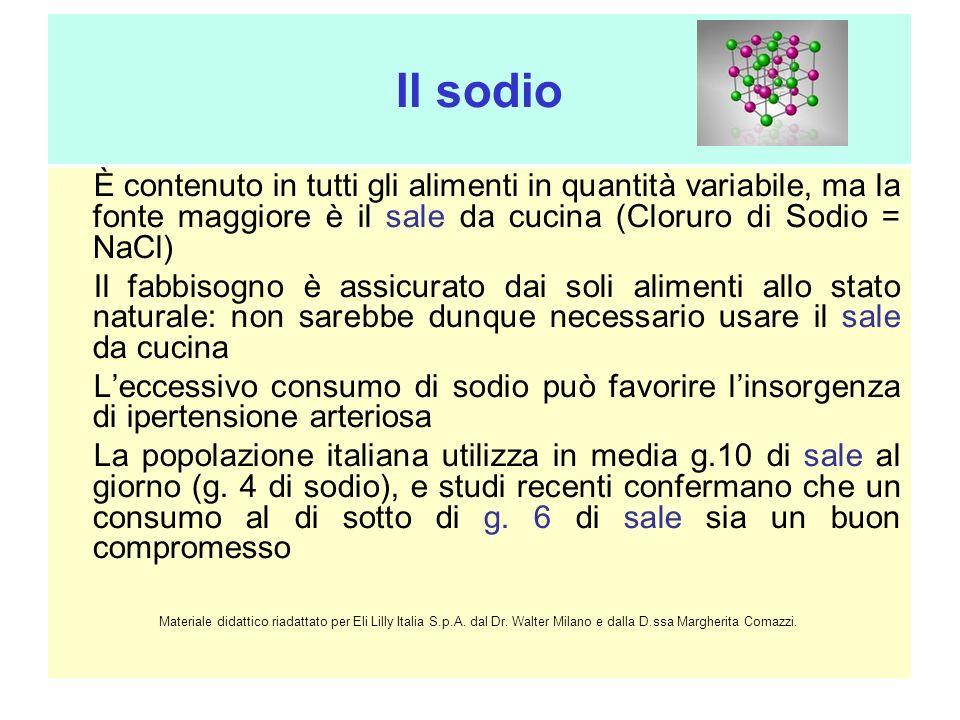 Il sodio È contenuto in tutti gli alimenti in quantità variabile, ma la fonte maggiore è il sale da cucina (Cloruro di Sodio = NaCl)