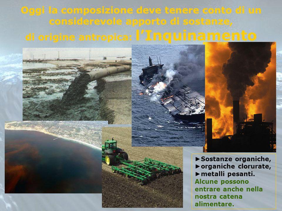 di origine antropica: l'Inquinamento
