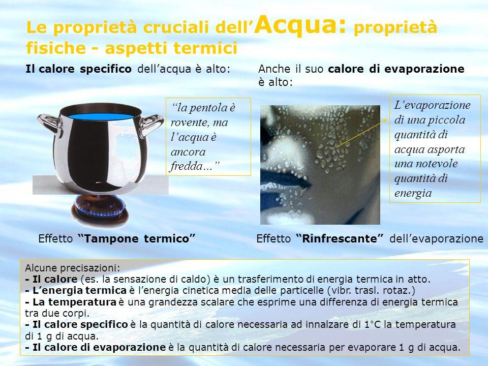 Le proprietà cruciali dell'Acqua: proprietà fisiche - aspetti termici