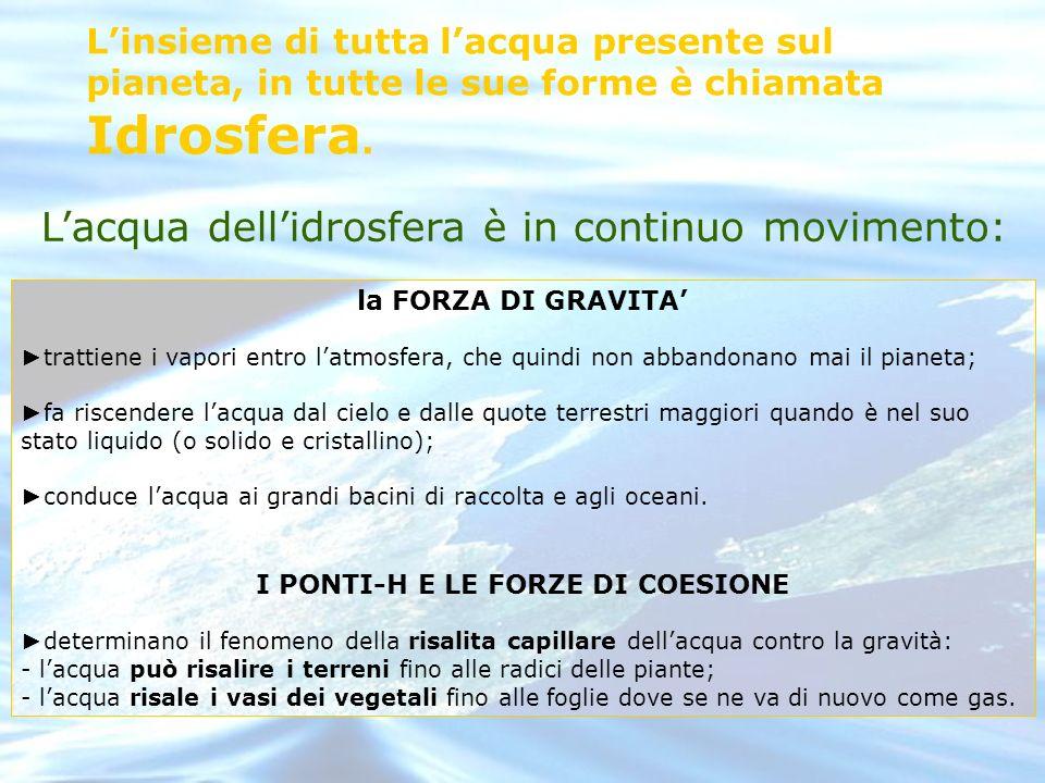 I PONTI-H E LE FORZE DI COESIONE