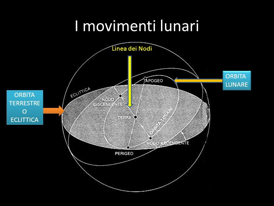 I movimenti lunari Linea dei Nodi ORBITA LUNARE ORBITA TERRESTRE