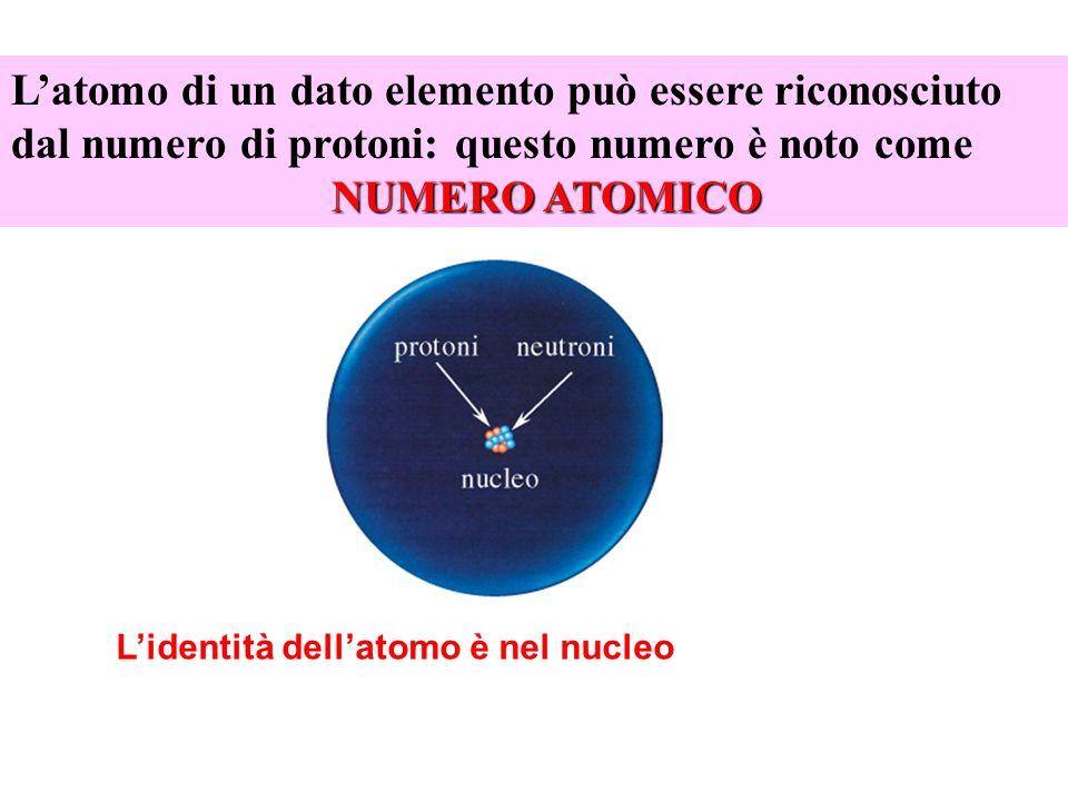 L'atomo di un dato elemento può essere riconosciuto dal numero di protoni: questo numero è noto come NUMERO ATOMICO