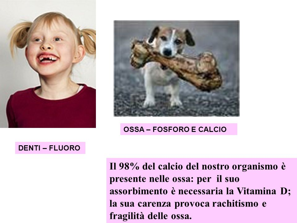 OSSA – FOSFORO E CALCIO DENTI – FLUORO.
