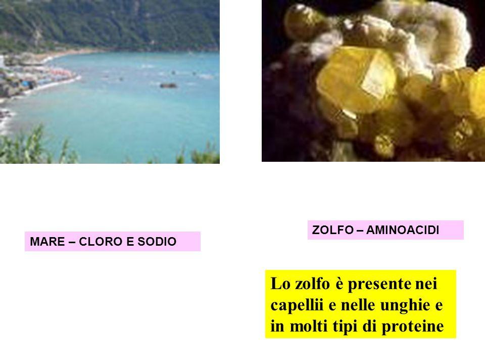 ZOLFO – AMINOACIDI MARE – CLORO E SODIO.