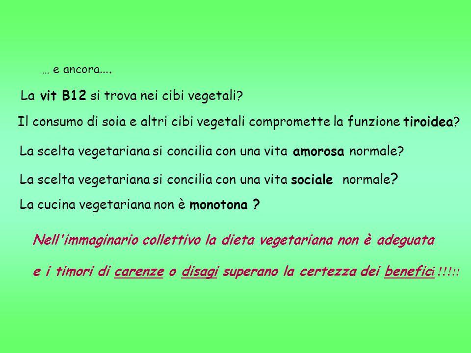 La vit B12 si trova nei cibi vegetali